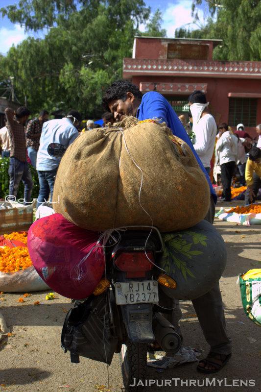 morning-market-scenes-jaipur-flower-market
