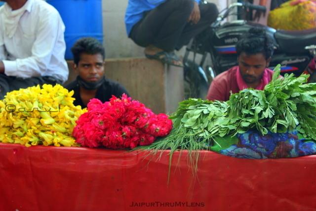 phool-mandi-flower-market-jaipur