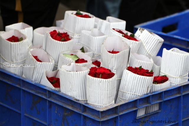 rose-flower-jaipur-market-photo