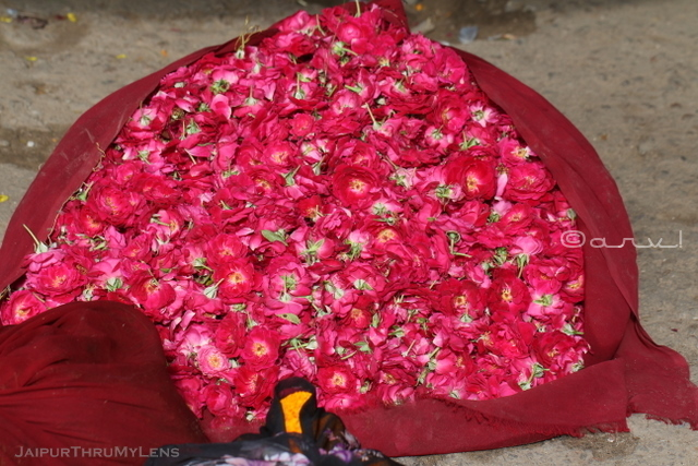 rose-market-jaipur-india-flowers
