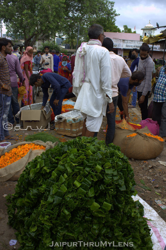 wholesale-flower-market-jaipur-india