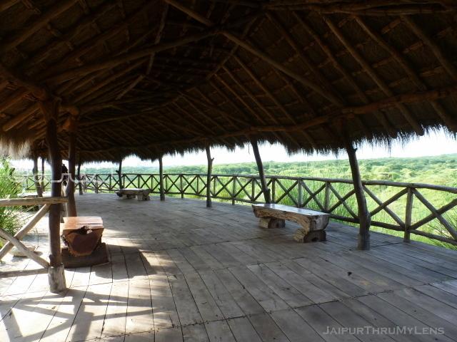 jungle-machan-thatched-roof-long-house-hut-kishan-bagh-jaipur