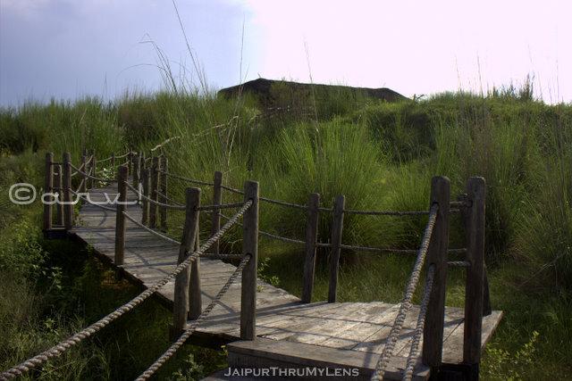 kishan-bagh-jaipur-board-walk-pradip-krishen-eco-tourism