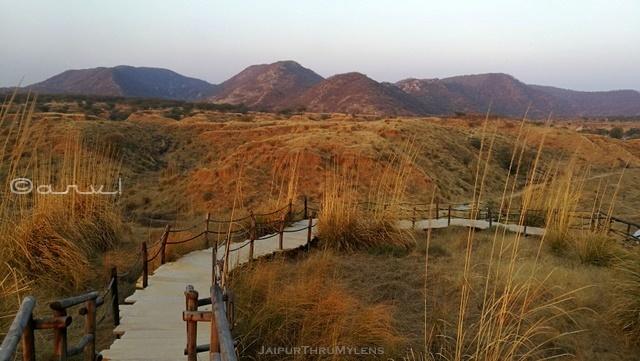 kishan-bagh-jaipur-sand-dunes-park-pradip-krishen