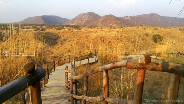 ravines-in-india-kishan-bagh-jaipur-project-by-pradip-krishen
